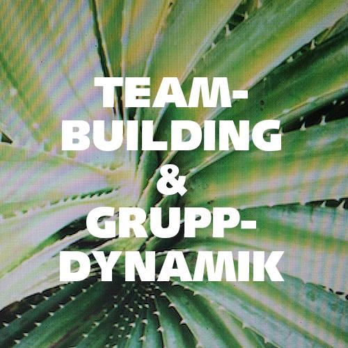 Teambuilding och Gruppdynamik